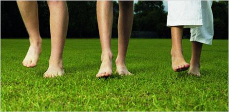 Lawn-feet