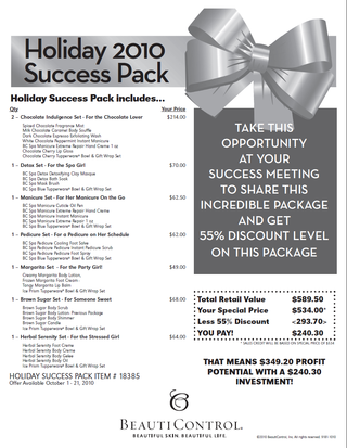 Holiday success offer