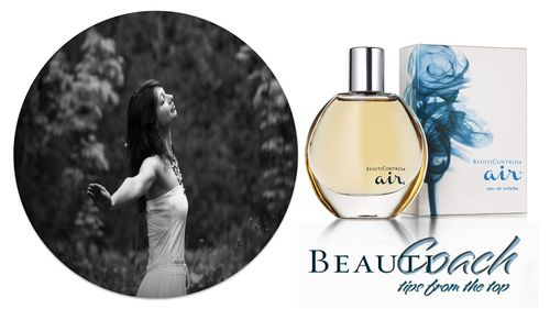 BeautiCoach Monthly Header and FooterTemplat - Air