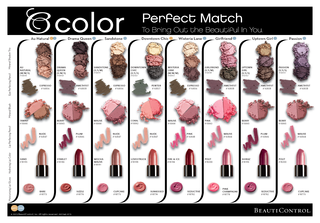 Perfect match color chart_Page_1