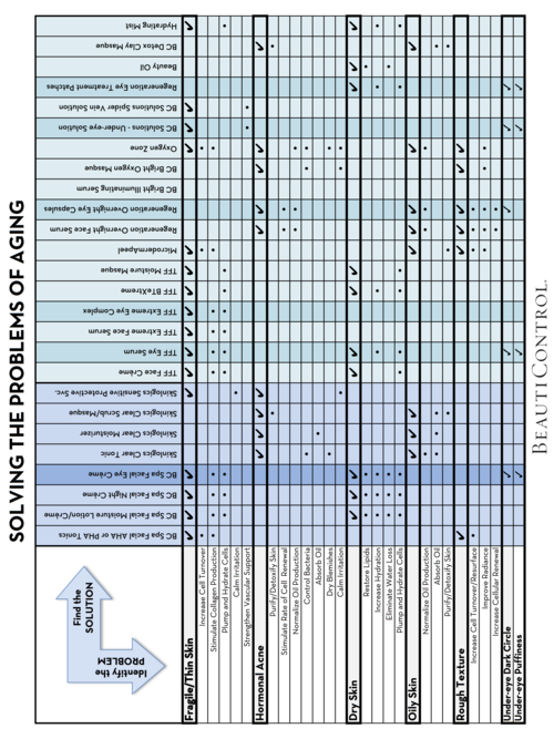 SOLVING THE PROBLEM OF AGING - PROBLEM-SOLUTION CHART HORIZONTAL LAYOUTpage2